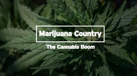 Marijuana Country- The Cannabis Boom