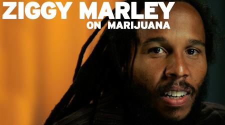 Ziggy Marley on Marijuana