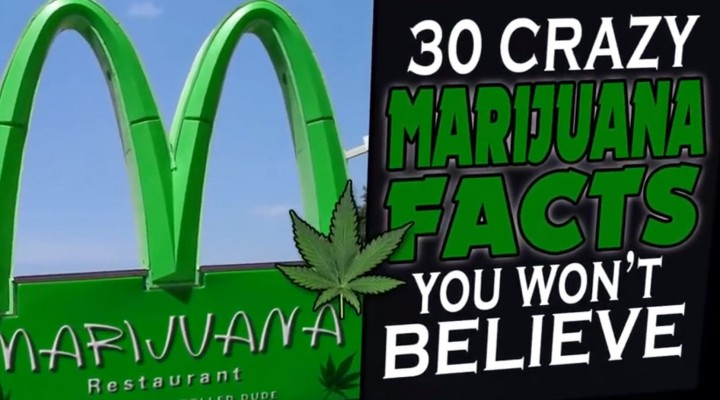 30 Crazy Marijuana Facts That will BLOW your MIND