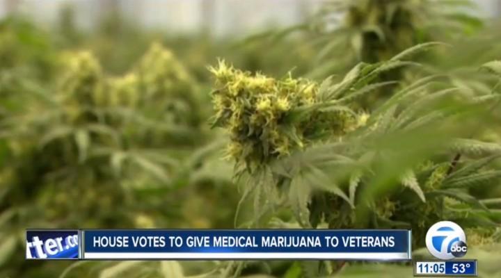 Congress approves VA medical marijuana treatment