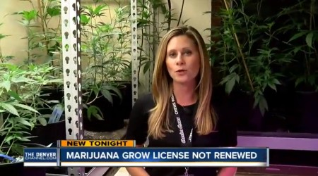 Marijuana Grow License Not Renewed