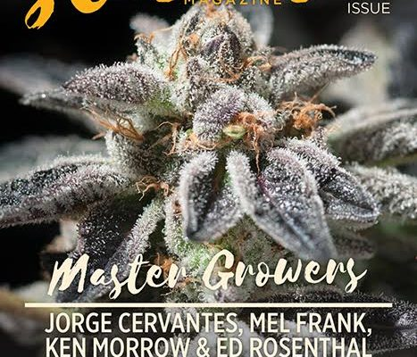 Puffin' with Pauly and Stoner Magazine