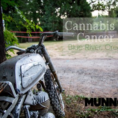 Cannabis Vs. Cancer II