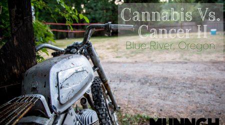 Cannabis Vs. Cancer II