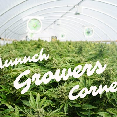 Today in our Growers Corner: Mutations!!